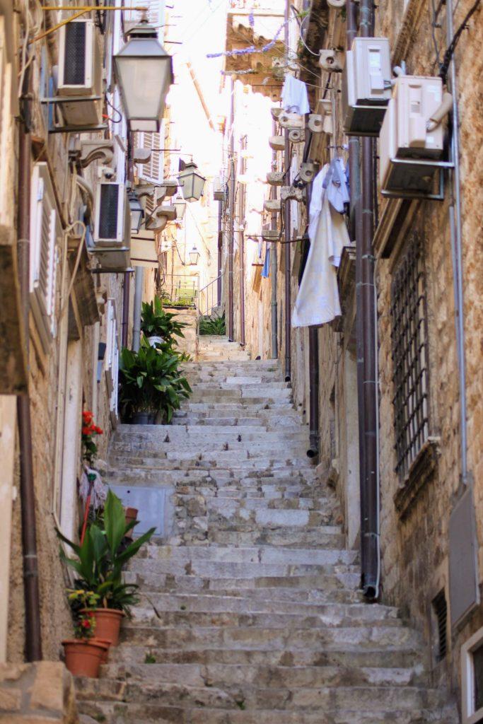Dubrovnik kuja